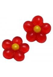 ดอกกลมแดง